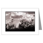 Brush Backlight Card