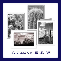 Arizona Desert - Black & White