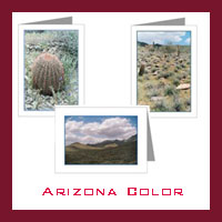 Arizona Desert - Color